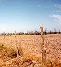 reforma agraria03