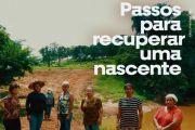 Passos para recuperar uma nascente: metodologia regional Goiás