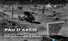 Massacre de Pau D'Arco – Laudo da PF constata o óbvio, foi crime de Estado